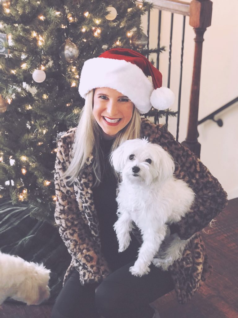 vegan cruelty free nontoxic sustainable ecofriendly holistic holiday gift guide ideas