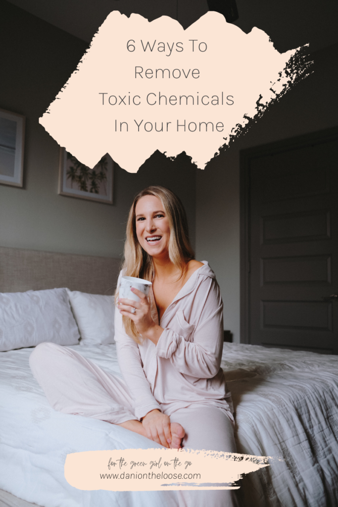6-ways-to-remove-chemicals-in-your-home-detox-home-dani-on-the-loose
